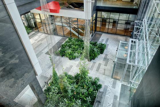 Courtyard greening by Jakob | Green facades