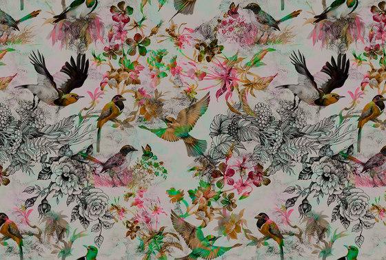 Walls By Patel | Funky Birds 1 di Architects Paper | Carta parati / tappezzeria