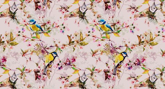 Walls By Patel| Wallpaper Songbirds 2 de Architects Paper | Revestimientos de paredes / papeles pintados