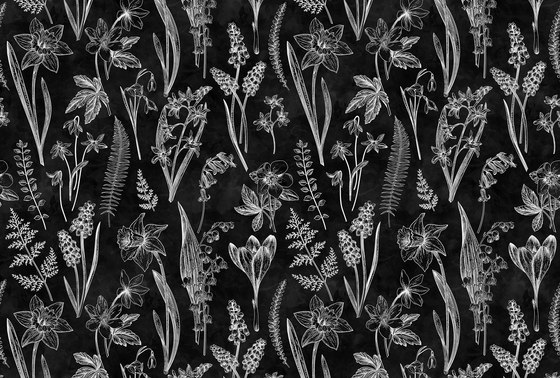 Walls By Patel | Wallpaper Blackboard 7 by Architects Paper | Wall coverings / wallpapers