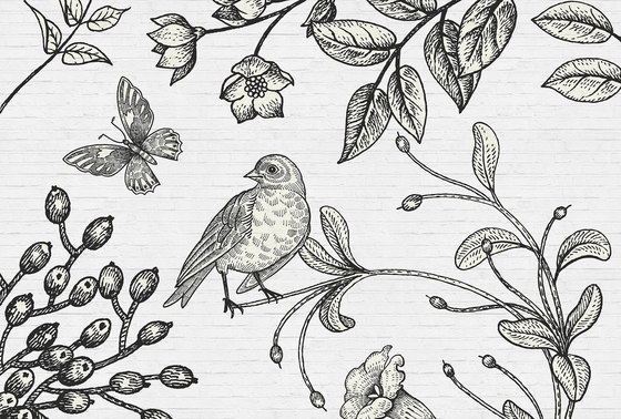 Walls By Patel| Birdy 2 by Architects Paper | Wall coverings / wallpapers
