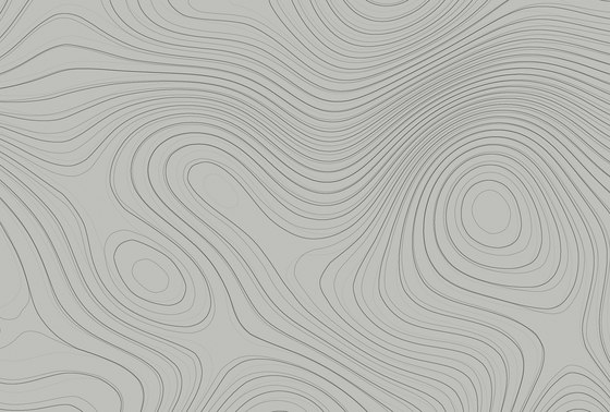 Walls By Patel  Wallpaper Zen Garden 2 de Architects Paper   Revestimientos de paredes / papeles pintados