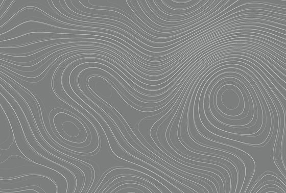 Walls By Patel| Wallpaper Zen Garden 3 by Architects Paper | Wall coverings / wallpapers