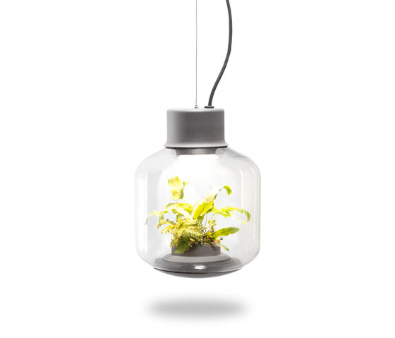 Mygdal Plantlight Regular Jungle de Nui Studio | Suspensions
