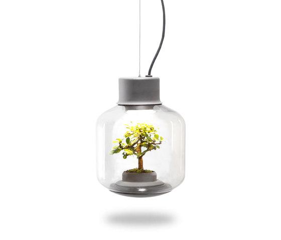Mygdal Plantlight Regular Zen by Nui Studio | Suspended lights