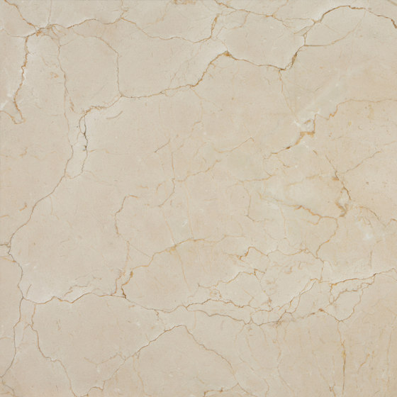Crema Marfil Coto detalle de LEVANTINA | Planchas de piedra natural