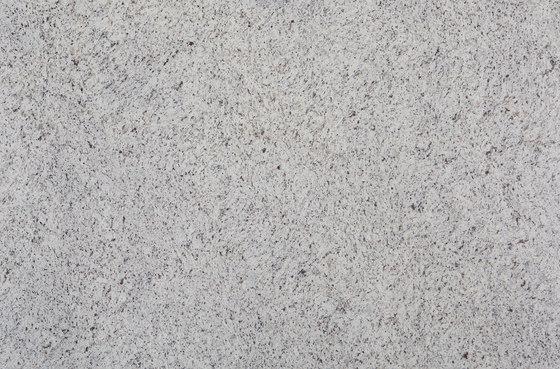 White Rose di LEVANTINA | Lastre pietra naturale