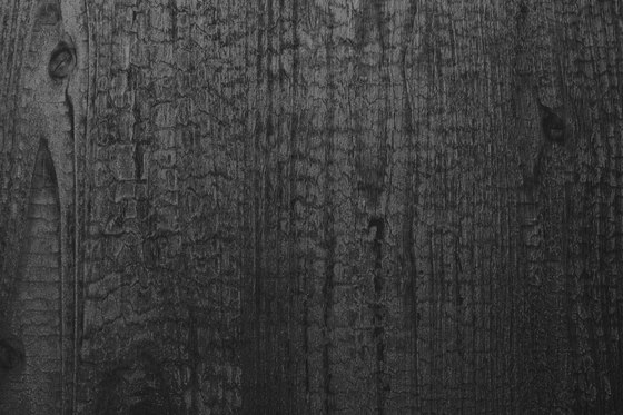 Wood - Wall panel WallFace Wood Collection 20224 by e-Delux   Synthetic panels