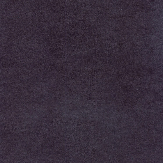 Club LW 360 51 by Elitis | Upholstery fabrics