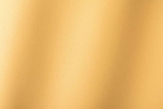 Bologna curry 018506 by AKV International | Synthetic woven fabrics