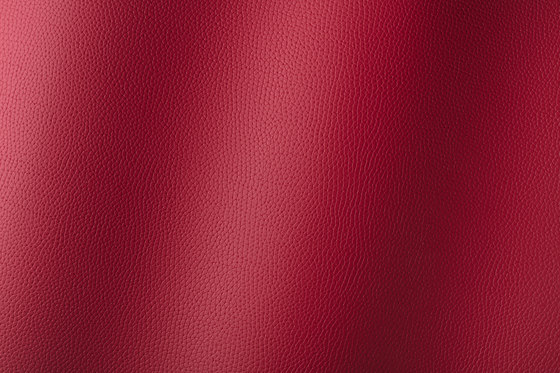 Bologna amarena 018509 by AKV International | Synthetic woven fabrics