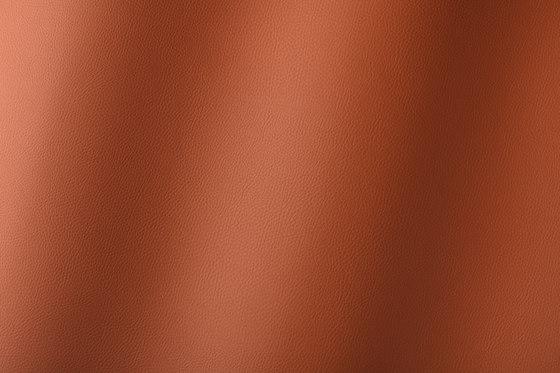 Torino sherry 019792 by AKV International   Synthetic woven fabrics