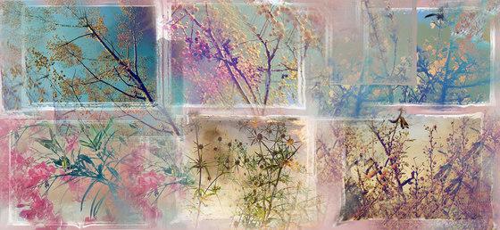 Fronde di pastelli colorati de WallPepper | Revêtements muraux / papiers peint