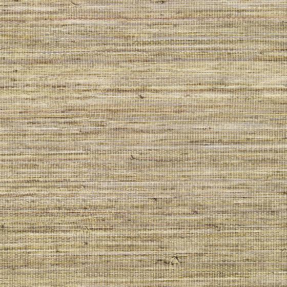 Panama | Musa VP 710 07 de Elitis | Revêtements muraux / papiers peint