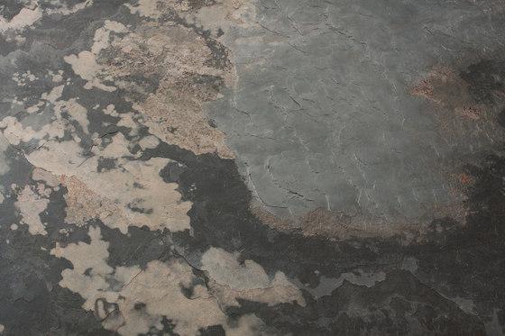 Mother Earth by Skinrock | Wall veneers