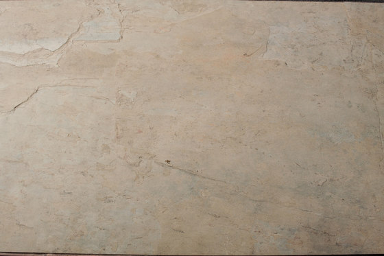 Wood Root by Skinrock | Wall veneers