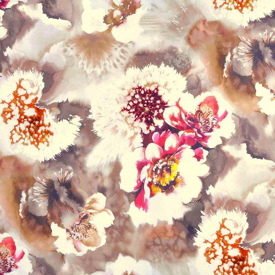 Pomelo | Colour Rose 05 by DEKOMA | Drapery fabrics