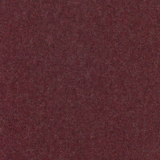 Wool | Colour Plum 19 di DEKOMA | Tessuti decorative