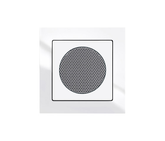 Busch-AudioWorld® built-in loudspeakers for radios, flush-mounted by Busch-Jaeger | Built-in speakers