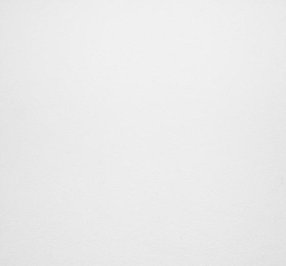 Lithos | Bianco Assoluto di Lapitec | Lastre ceramica