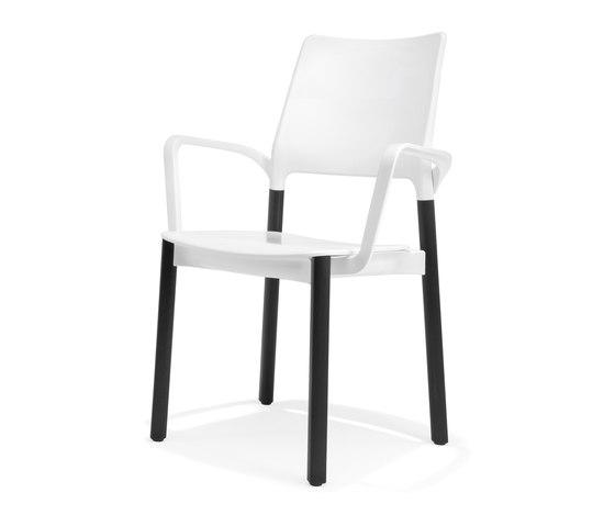 3610/4 Arn von Kusch+Co | Stühle