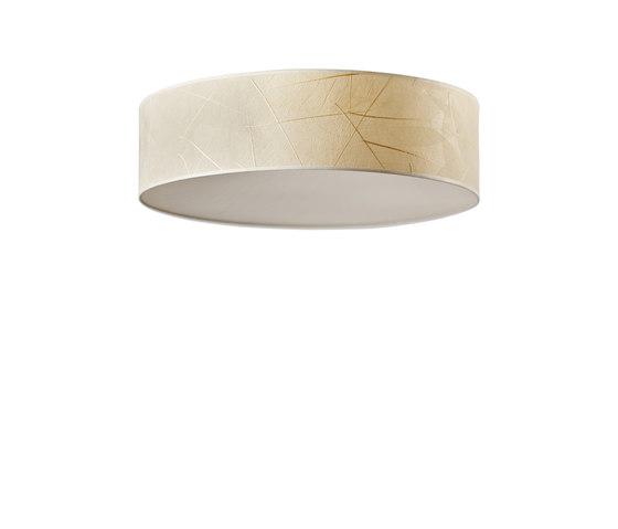 Discus Ceiling | Leaves by LeuchtNatur | Ceiling lights