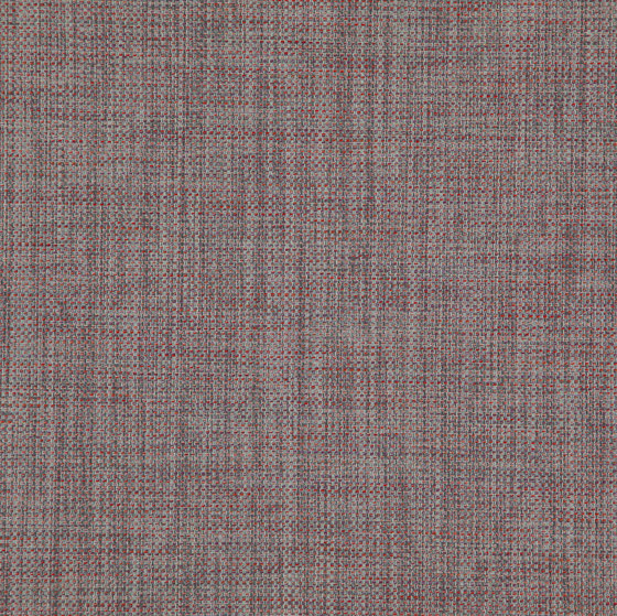 Lazarus Latin by FR-One | Drapery fabrics
