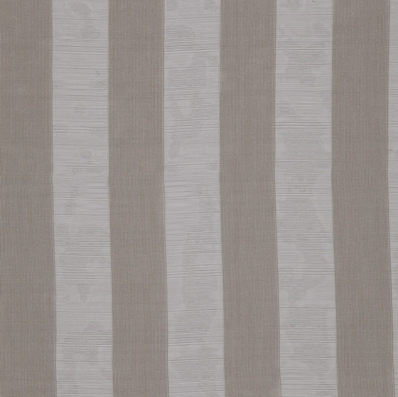 Lust Lineal by FR-One | Drapery fabrics