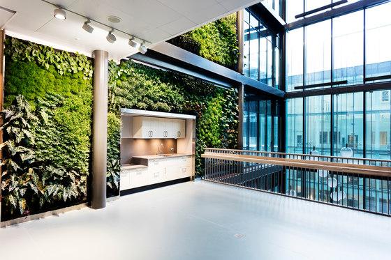 Indoor Vertical Garden | Biomedicum von Greenworks | Pflanzenwände