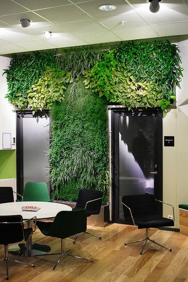 Indoor Vertical Garden | IHM Business School by Greenworks | Plant pots
