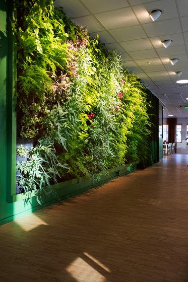 Indoor Vertical Garden | Preem Head office von Greenworks | Pflanzgefäße