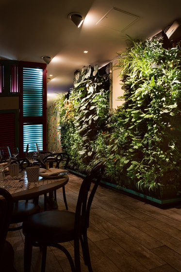 Indoor Vertical Garden | Sambamaki by Greenworks | Plant pots