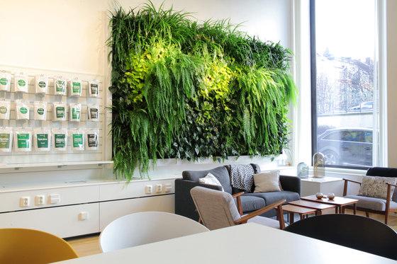 Indoor Vertical Garden | Superfruit von Greenworks | Pflanzgefäße