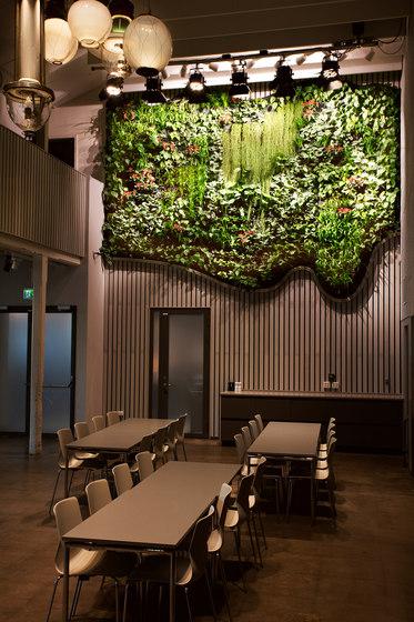 Indoor Vertical Garden | Tekniska Museet de Greenworks | Parades verdes / jardines verticales