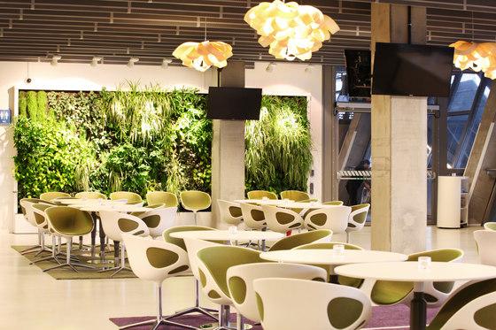 Indoor Vertical Garden | Tele 2 Arena Vip Lounge Area von Greenworks | Pflanzgefäße