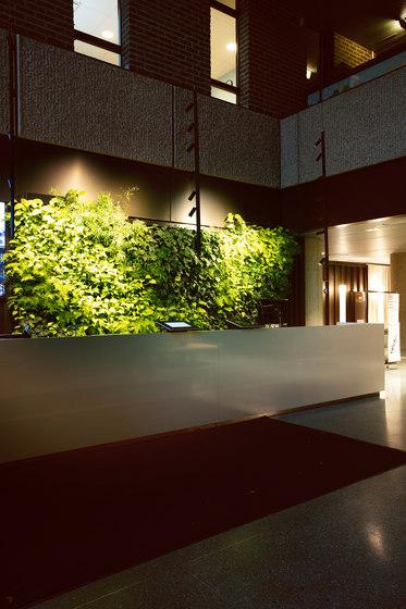 Indoor Vertical Garden | Trygg-Hansa Headoffice by Greenworks | Plant pots