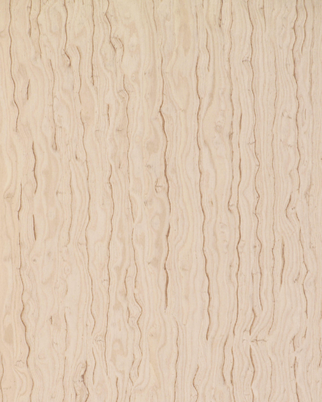 62807 Silver Ash Figured Wood Veneers From Treefrog