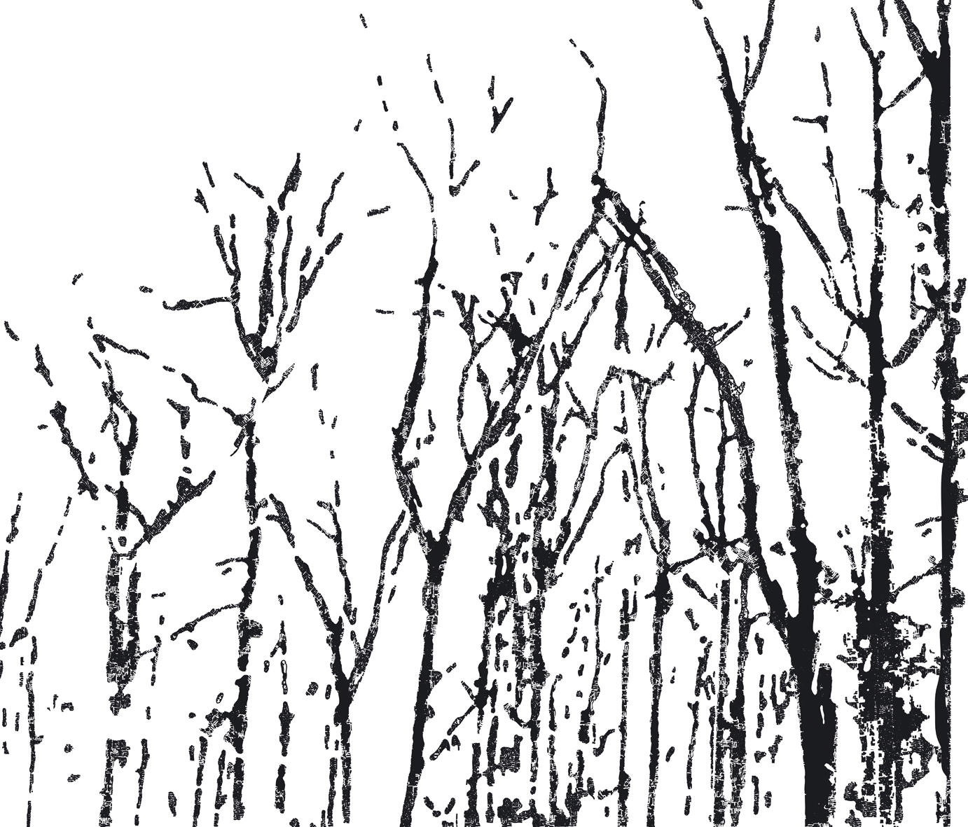 Line Art Forest : Black forest carta da parati wall decò