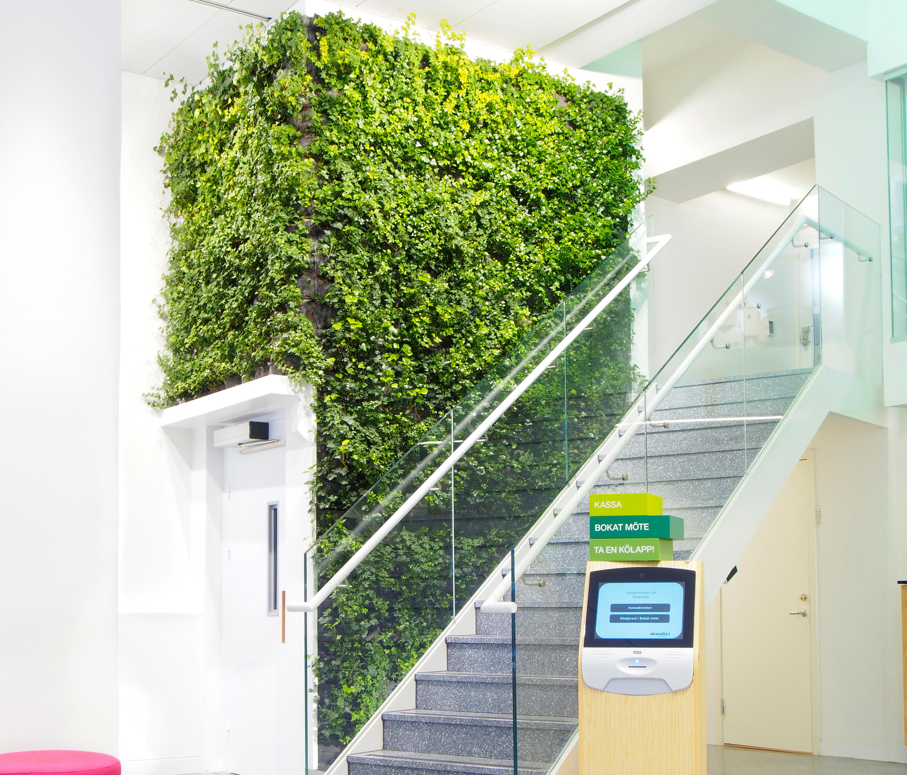 how to make a plant wall