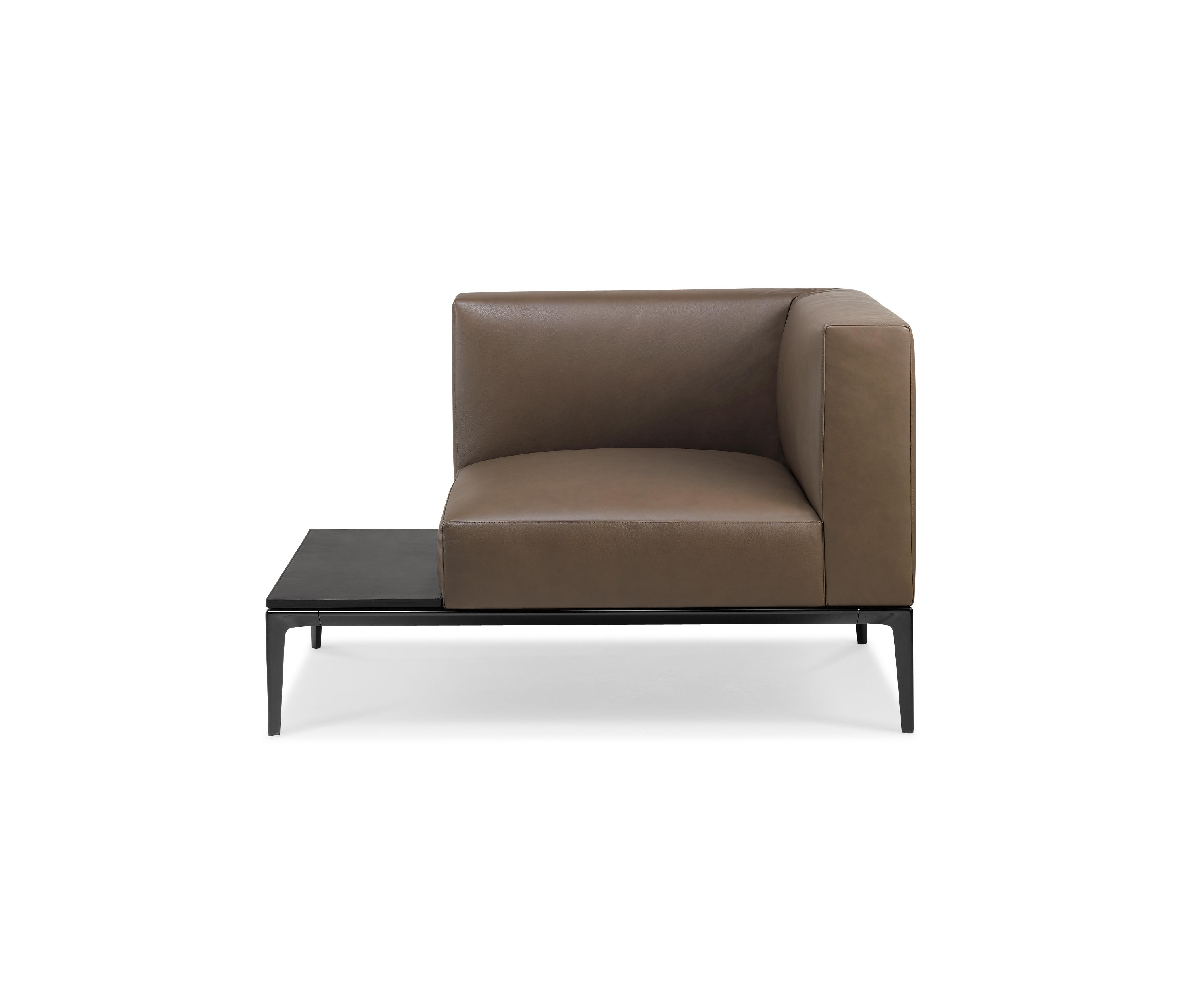 jaan living armchair lounge chairs from walter knoll architonic. Black Bedroom Furniture Sets. Home Design Ideas
