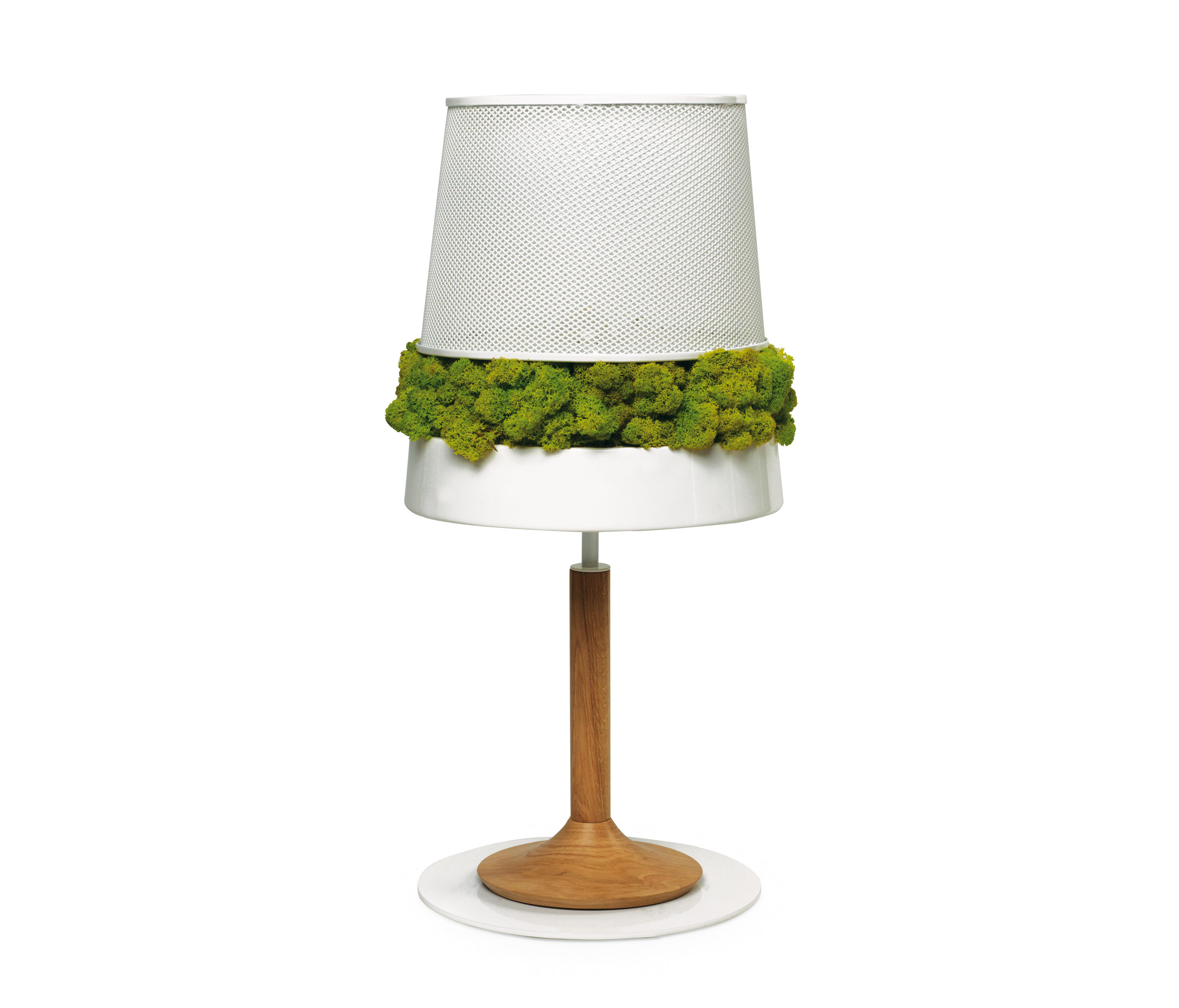 Moss Table l& by Verde Profilo   Table lights  sc 1 st  Architonic & MOSS TABLE LAMP - Table lights from Verde Profilo   Architonic