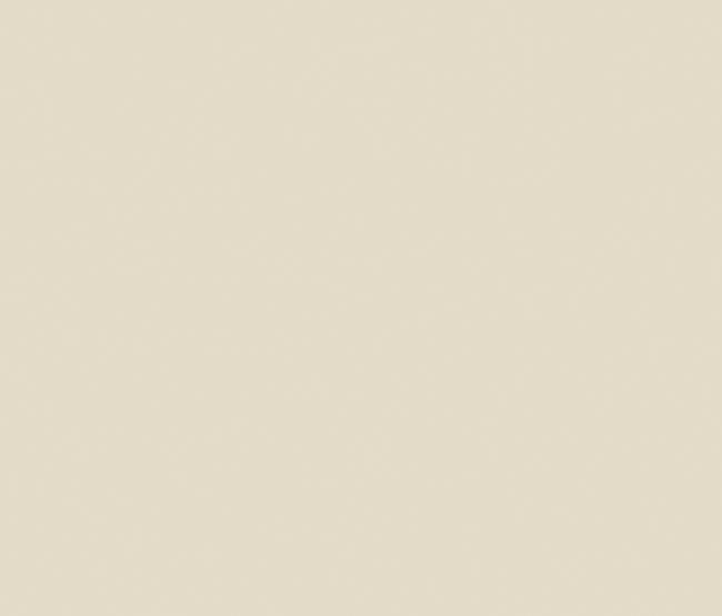 Kitchen colorfeel avorio planchas de neolith architonic - Neolith precio ...