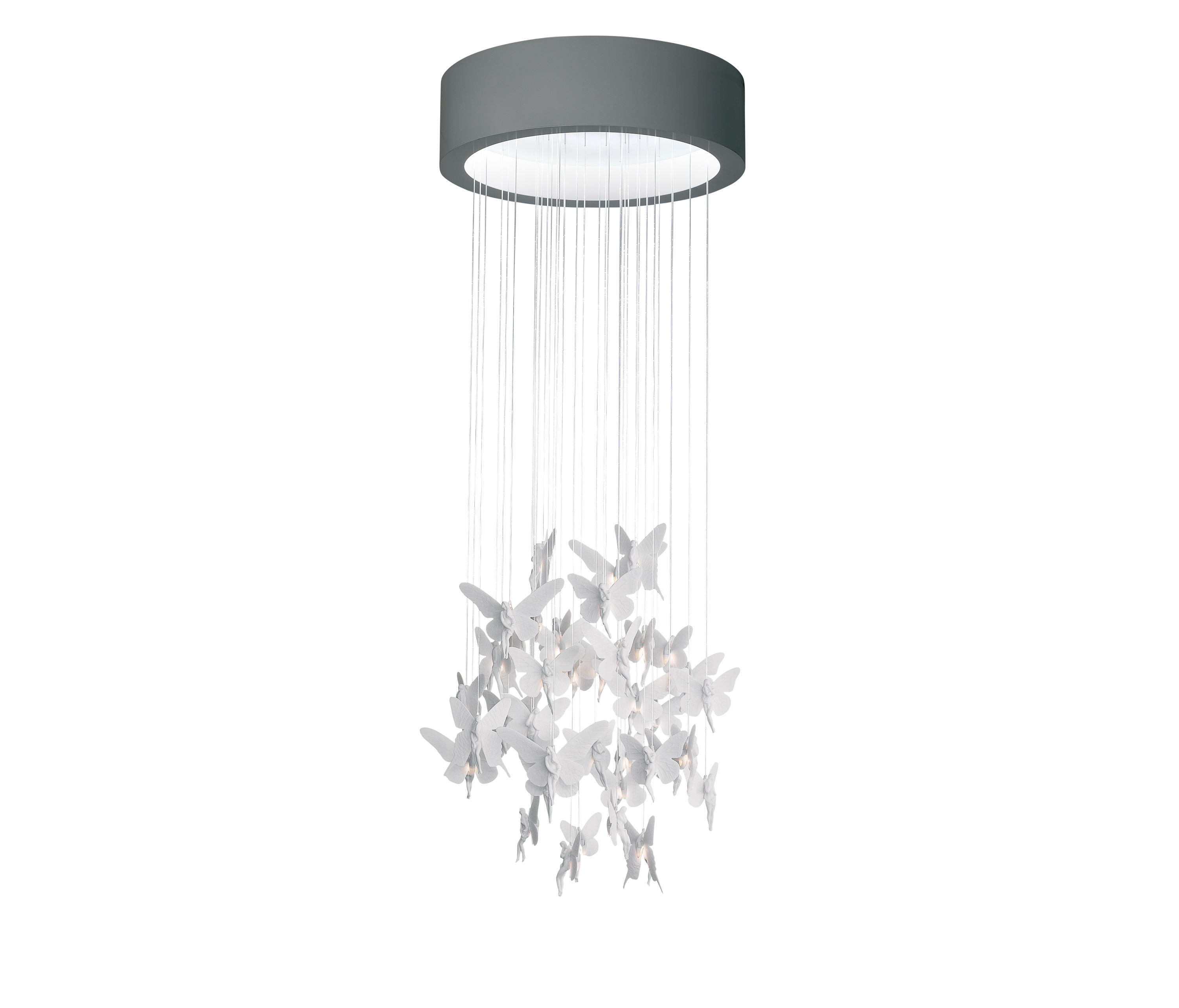 Niagara chandelier general lighting from lladr architonic niagara chandelier by lladr general lighting arubaitofo Choice Image