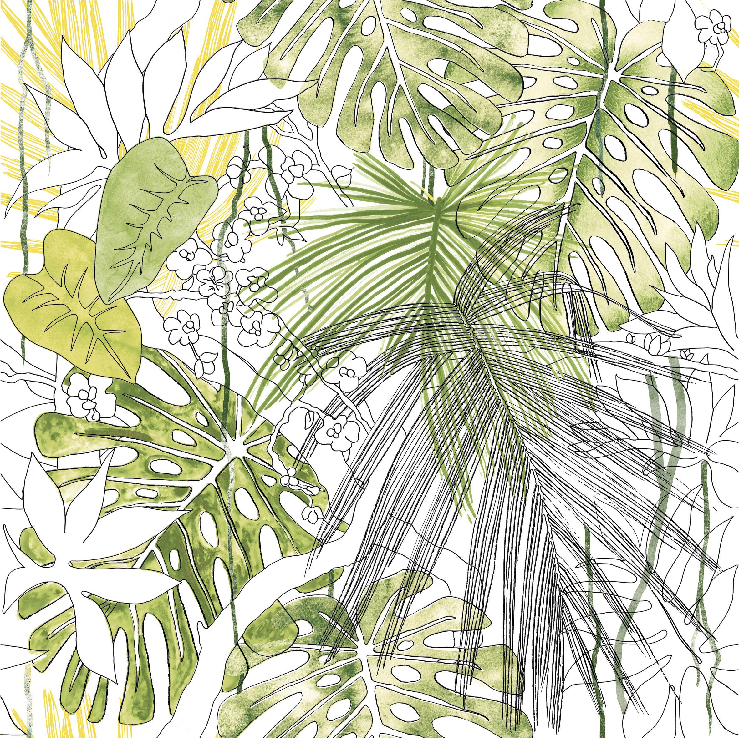 jungle animali u00c9r flora equatoriale