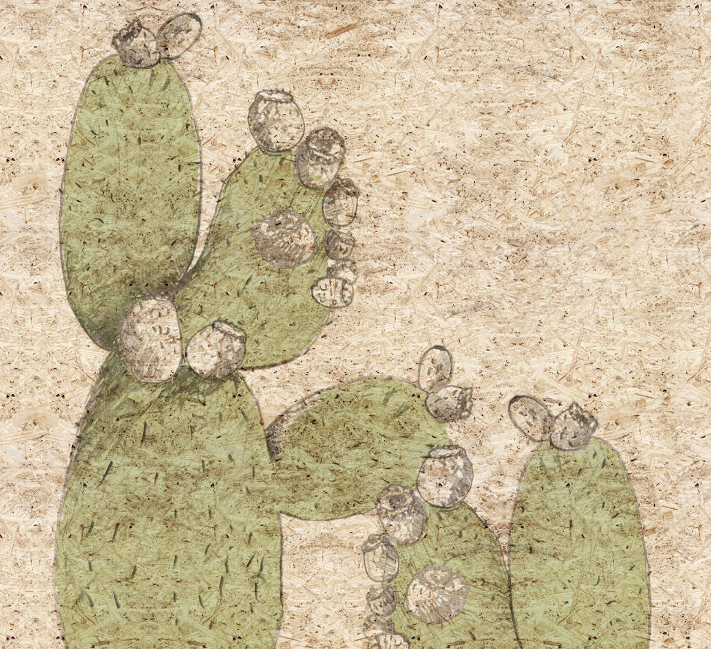 cactus juice wall art murals from wall dec architonic. Black Bedroom Furniture Sets. Home Design Ideas