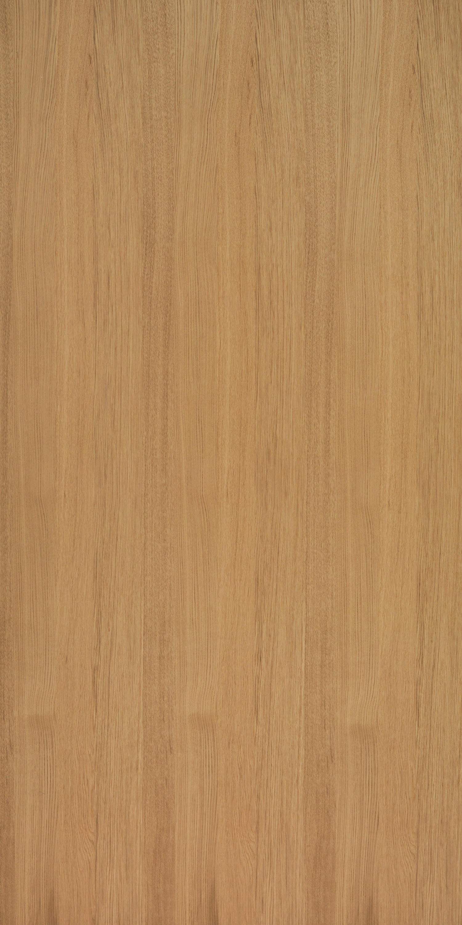Querkus Oak Naturel Adagio Wall Veneers From Decospan