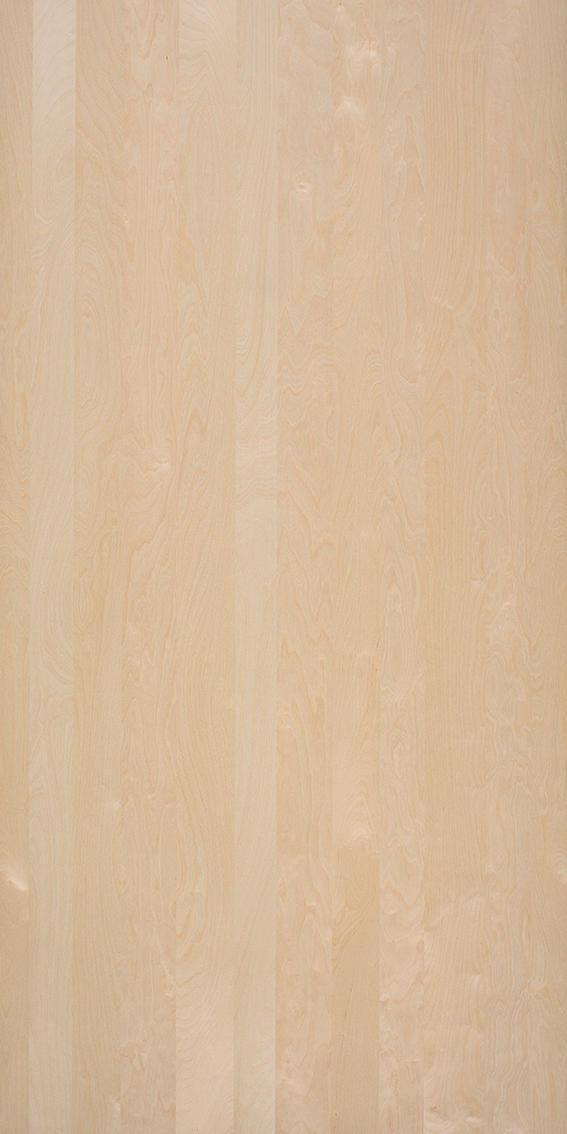 Nordus Snow Birch Wall Veneers From Decospan Architonic