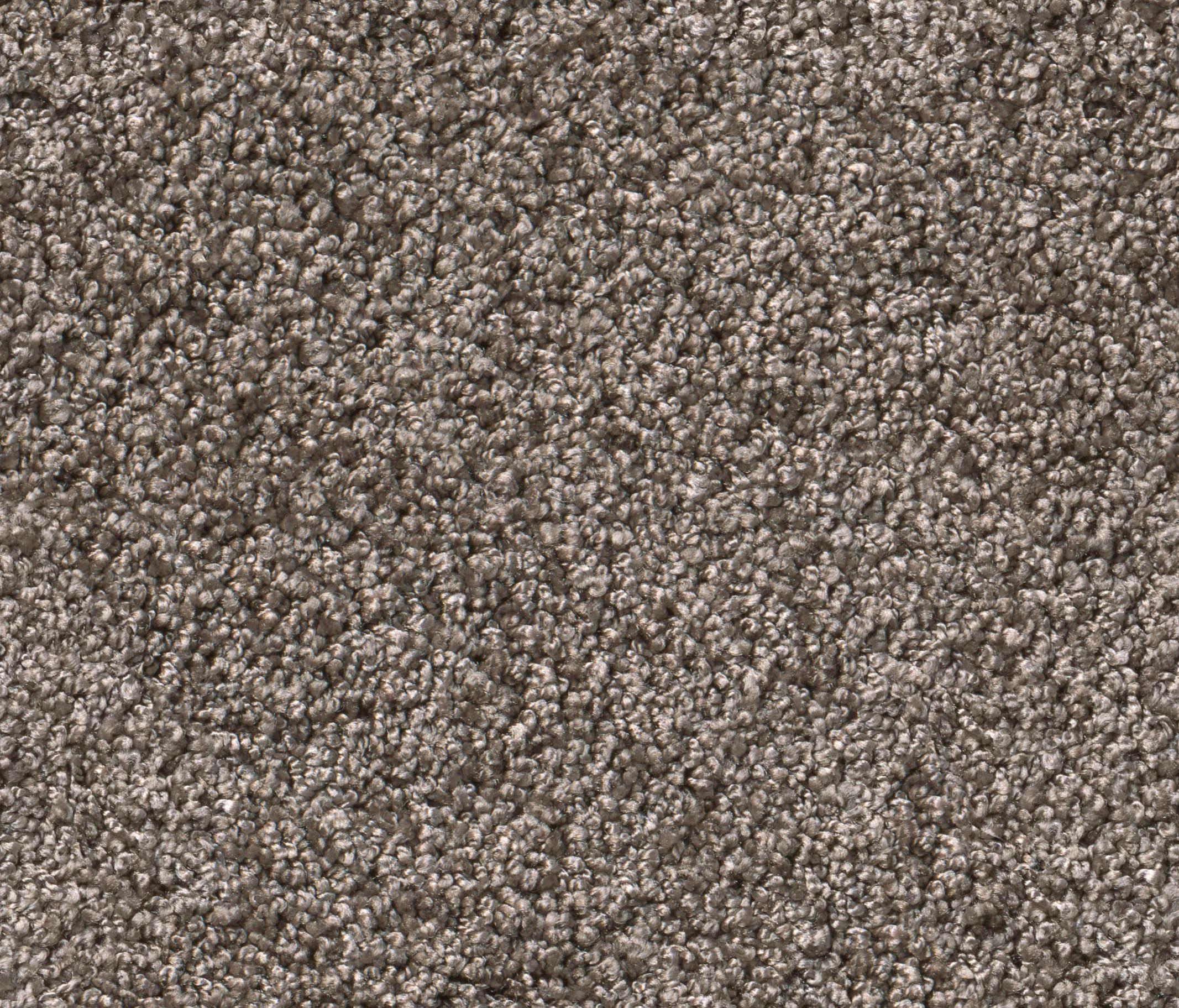 smoozy by object carpet walltowall carpets