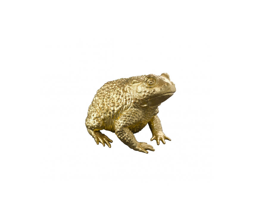 golden toad talisman miscellanneous from fisher weisman architonic