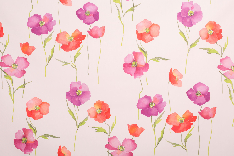 Poppies | 15724 by Dörflinger & Nickow | Drapery fabrics